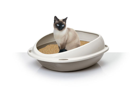 cat little tray tables