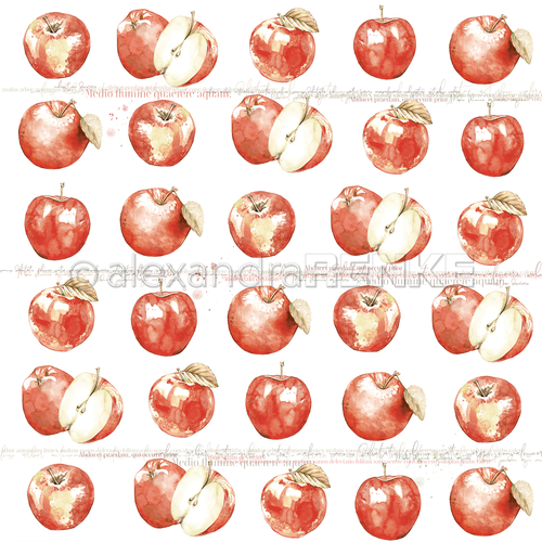 A. RENKE - Carta  'Apple Rapport'